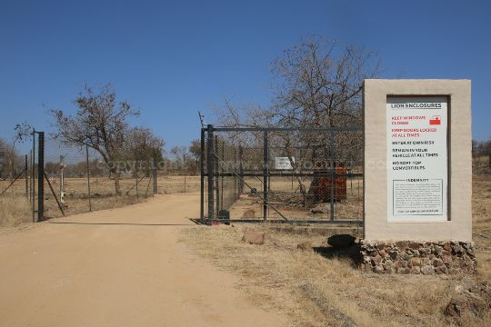 The entrance to the first predator camp at the Lion and Safari Park near Johannesburg