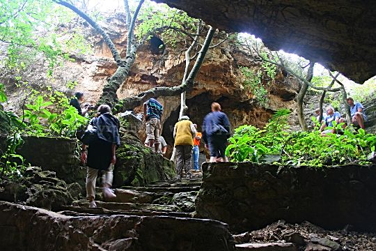 There are 211 steps that you climb to get back to daylight and the surface at the Sterkfontein Caves in the Cradle of Humankind near Johannesburg